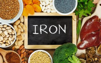 Best Iron Food Sources