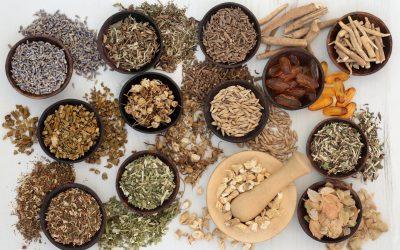 Top Adaptogenic and Calming Herbs for Sleep